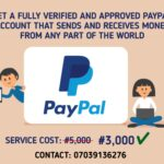 I will create a Fully Verified PayPal account for you, all countries